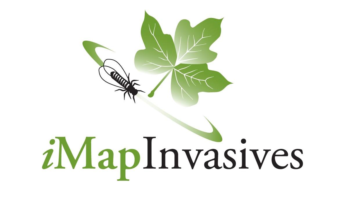 https://www.lhprism.org/sites/default/files/iMapInvasives_logo_large_color_notag_crop.jpg
