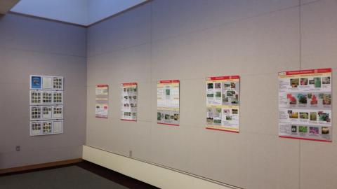 Interpretive panels on display