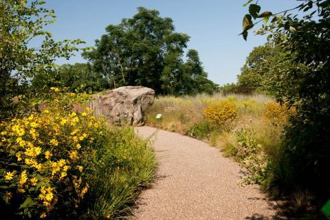 https://www.nybg.org/garden/native-plant-garden/